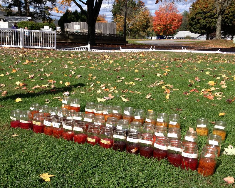 Rhinebeck--most of the jars in the sun