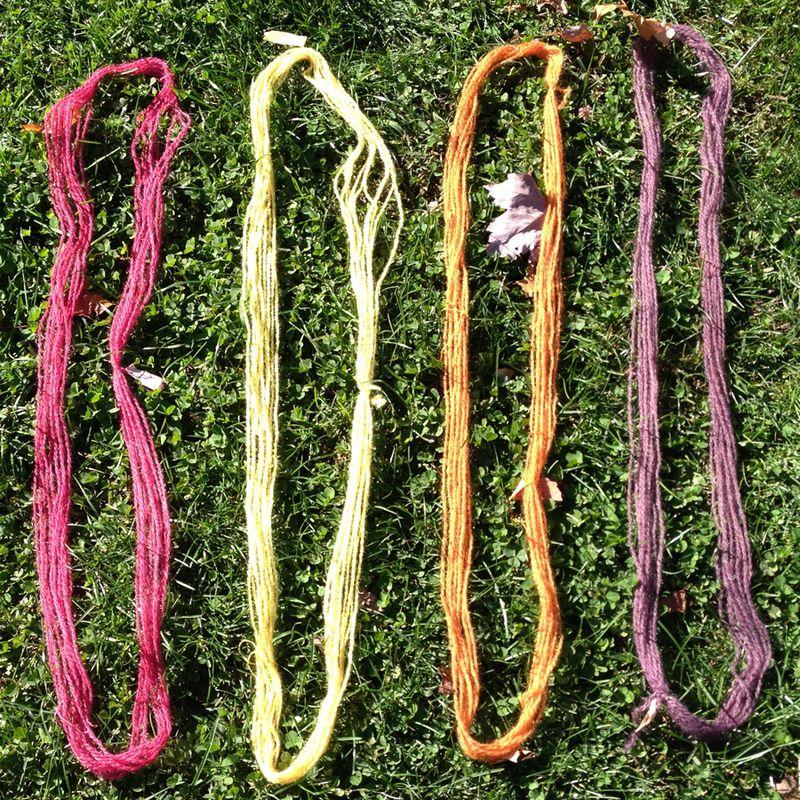 Rhinebeck--four base colors on yarn