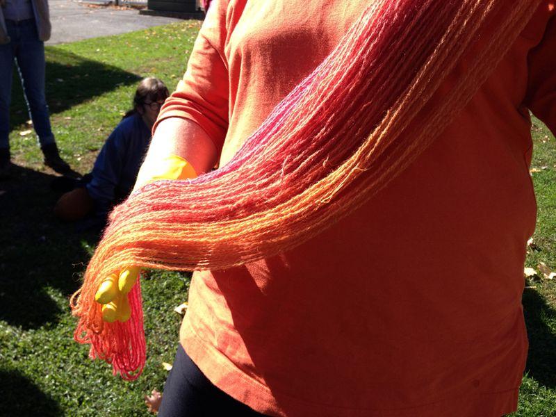 Rhinebeck--matching yarn, gloves, and shirt