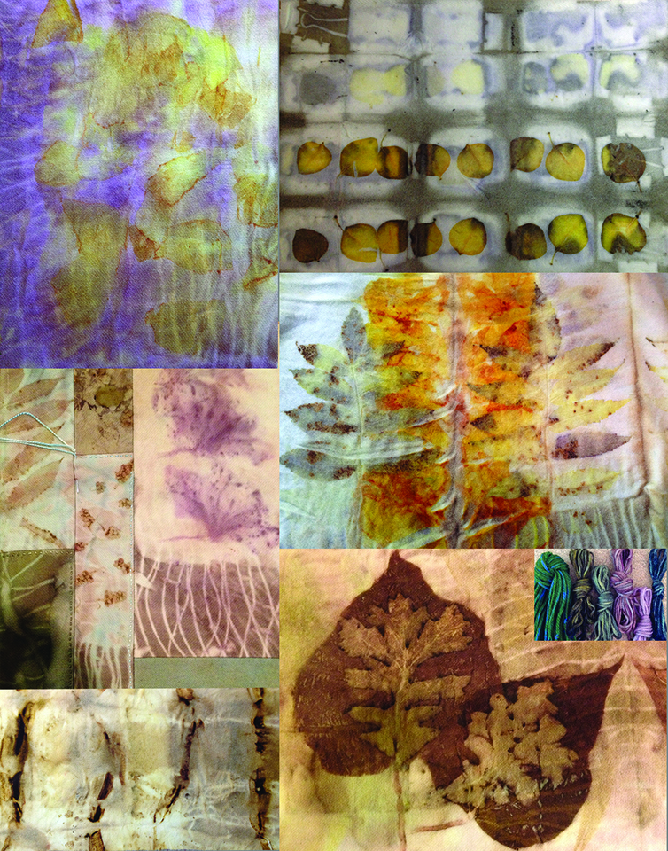 Botanical Printing & Dyeing with the Seasons promo 0317